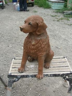 犬 塗装前
